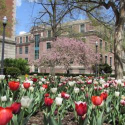 Derby Hall in Spring