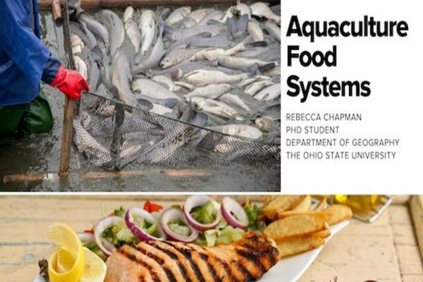 Aquaculture food systems